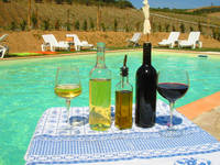 B & B typical Tuscan wines and local products