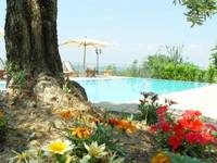 garden swuimming pool Tuscany Montaione Chianti