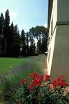 To sleep in Tuscany Villa vacation Asciano Siena